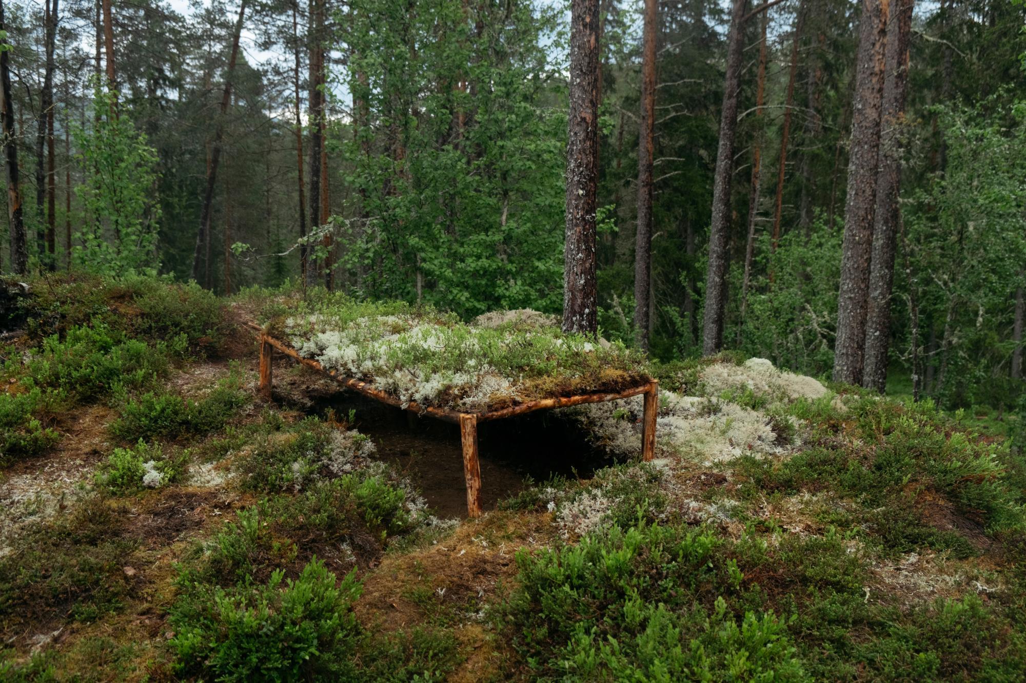 Sebastian Rusten - utstilling i skogen