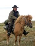 Riding heldagstur