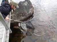 Fiske for alle slåttahølen