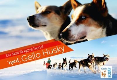 Geilo Husky Gavekort
