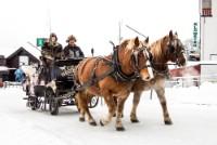 Hest og slede - Kanefart