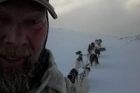 Hundekjøring heldagstur PETTER