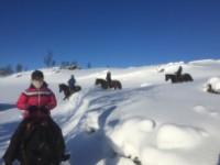 Vinterridning