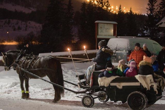 Stemningsfull tur med hest og vogn