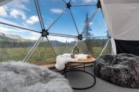 Dyrja Domes