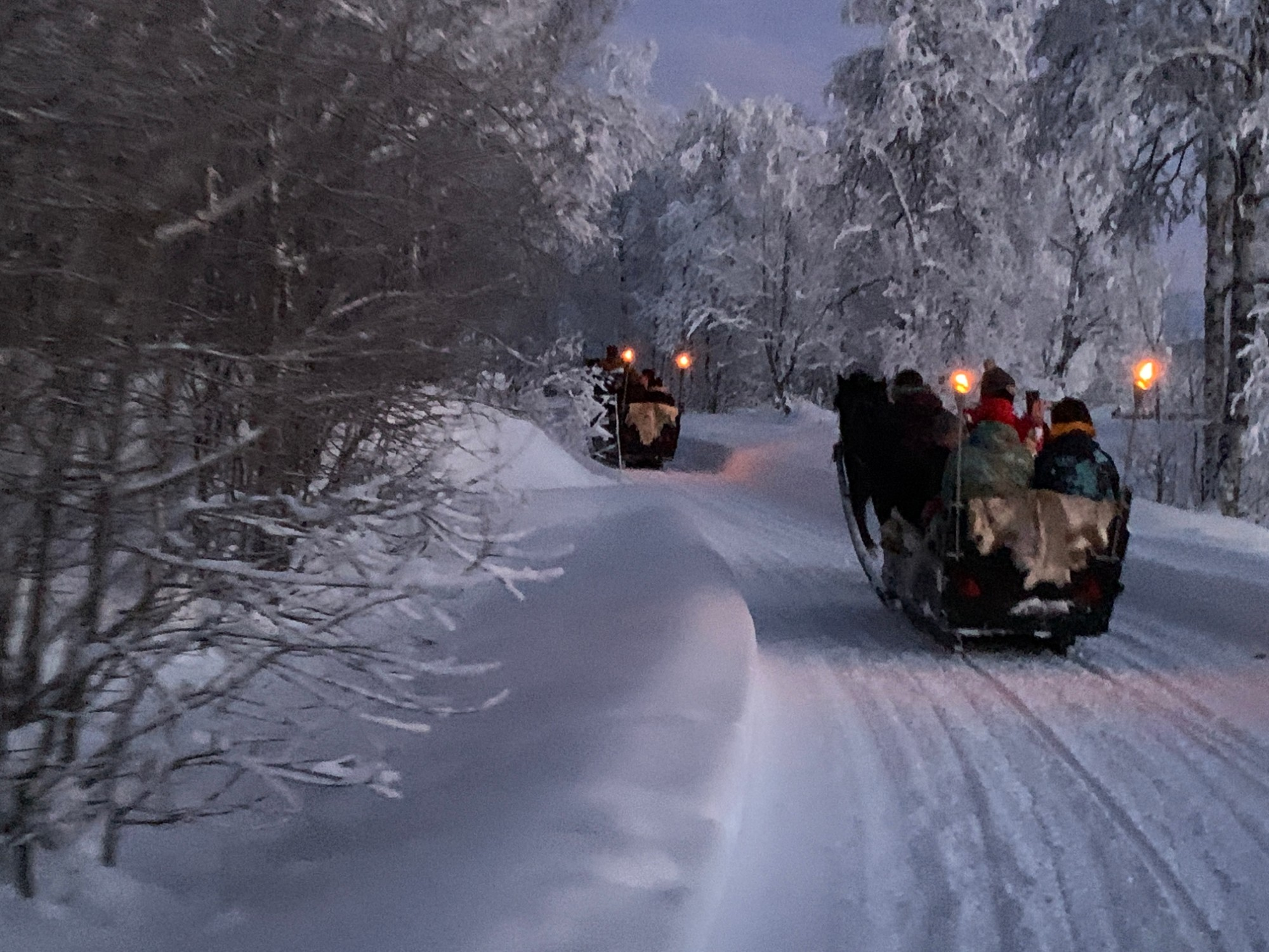 Sleigh ride in winterwonderland