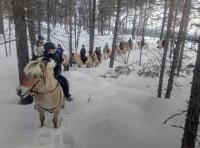 Tur i skogen med rideleiren i vinterferien