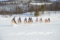 Galopp i snøen med rideleiren i vinterferien