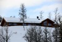 Skogshorn A