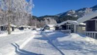 Hytte på Liodden Camping